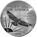 American Platinum Eagle bullion coin.